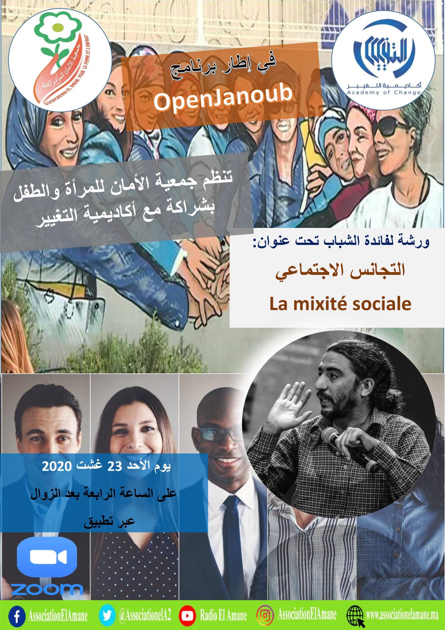 التجانس الاجتماعي  La mixité sociale